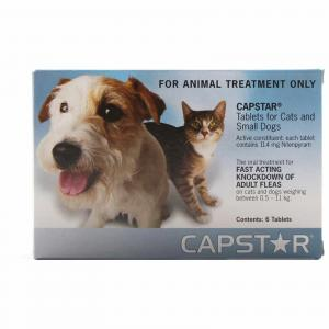 Capstar Capstar Cats/Sml Dogs 11mg 6s