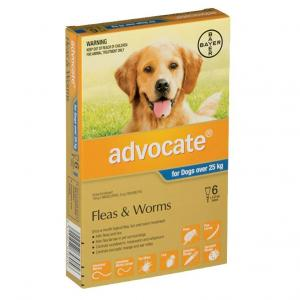 Advocate Advocate - Flea and Worm Treatment for Dogs 25kg+