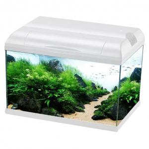 Aquarium Supplies & Products - Shop Fish Products