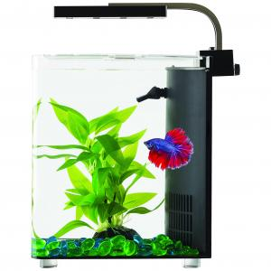 Blue Planet Blue Planet Betta Cube Aquarium 9L