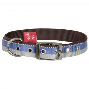 Yours Droolly  Tricolour Buckle Collar