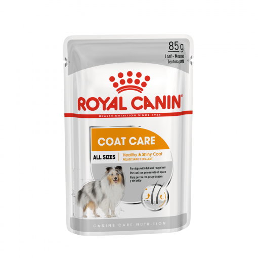 Royal Canin Royal Canin Coat Care Wet Dog Food 85g thumbnail