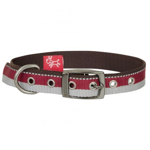 Yours Droolly Yours Droolly Tricolour Buckle Collar Burgundy thumbnail