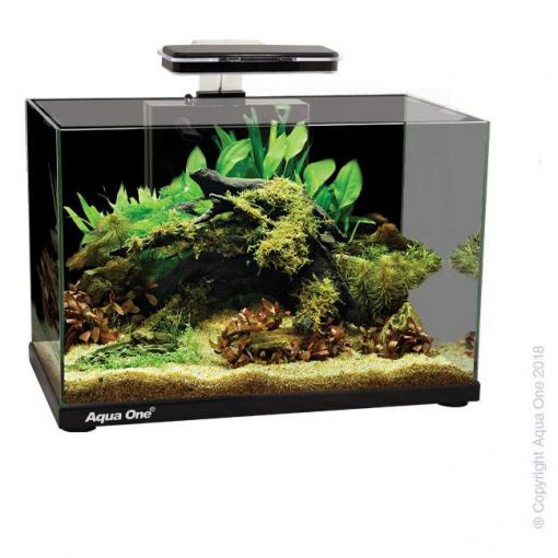 Aqua One Aqua One Focus 36 Glass Aquarium 36L Black thumbnail