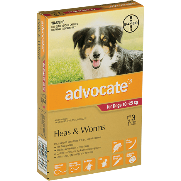 Advocate Advocate Large Dog (10-25kg)